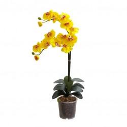 Orkide / Sarı ( Tek Dallı ) 50x70 cm